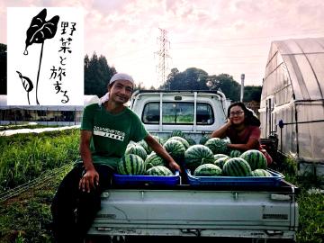 野菜と旅する(東近江市)